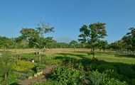Every residential plot has a view of Mt Meru